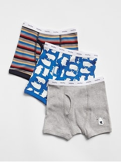 Bear Boxer Briefs (3-Pack)