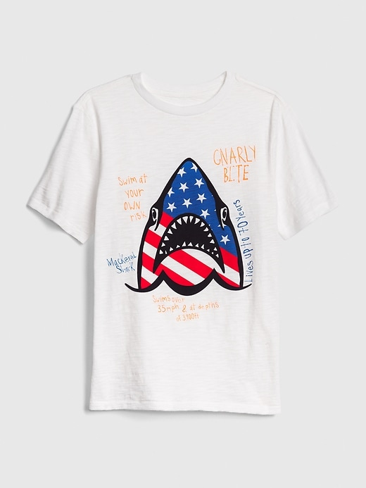 Kids Americana Graphic Short Sleeve T-Shirt