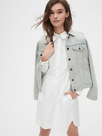 Pleated Oxford Shirtdress